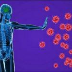 Cara Mencegah dan Melindungi Tubuh Dari Bahaya Virus Corona