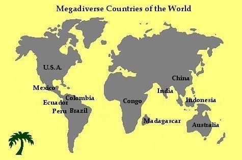 indonesia merupakan salah satu negara megadivrse